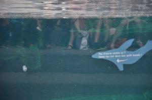 signalétique parc zoologique de Paris