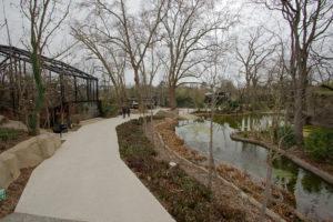allées zoo de Vincennes